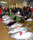 Fresh tuna are lined up for the first auction of the year at the Choshi fishing port in Japan on Jan. 4, 2020, when about 36 tons of tuna, swordfish and other fish were landed at the port. Last year, the port had a haul of more than 280,000 tons, possibly making it the port with the largest landing volume for nine consecutive years. MUST CREDIT: Yomiuri Shimbun