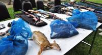 The carcasses of mouse deer and creek frogs killed in the game hunting by the group and their rifles were present after the arrest. Photo credits/ and courtesy of Petchaburi Journalists Association president, Surapon Naknakorn.