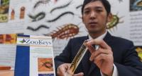 A researcher at Chulalongkorn University's Centre of Excellence on Biodiversity presents a new species of centipede found in Surat Thani during a press conference in Bangkok yesterday.