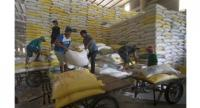 Rice for exports at the Dong Thap Food Company in the southern province of Dong Thap. — VNA/VNS Photo Vu Sinh