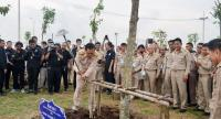 Prime Minister General Prayut Chan-o-cha spearheads the tree-growing project's activities during on Monday ceremony in Ayutthaya province.