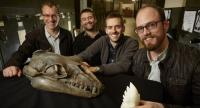 This undated handout photograph from Museums Victoria in Melbourne released on August 29, 2017 shows (L-R) Alistair Evans, Erich Fitzgerald, Felix Marx and David Hocking with a Janjucetus skull and 3D tooth model. // AFP PHOTO