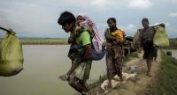 Displaced Rohingya refugees from Rakhine state in Myanmar walk near Ukhia, at the border between Bangladesh and Myanmar, as they flee violence on September 4.//AFP