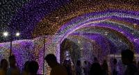 People visit 'Thailand Illumination Festival 2017 to be held until January 6.//EPA-EFE