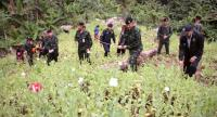 Thai soldiers and hill tribes people destroy an opium poppies field near an ethnic hill tribe valley on a mountain in Mae Taeng district, Chiang Mai province, northern Thailand, 06 December 2017./EPA-EFE/SONGMONG