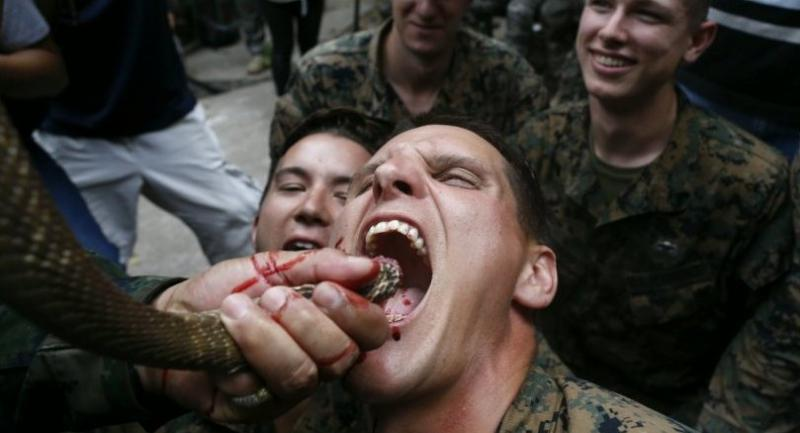 US Marines drink a cobra's raw blood offered by a Thai Marine instructor during jungle survival training as part of the multinational joint military exercise Cobra Gold 2018 at Royal Thai Naval Base, Thailand. // EPA-EFE PHOTO