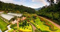File photo: Queen Sirikit Botanical Garden