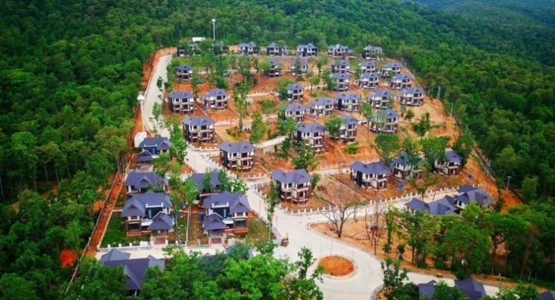 Photos courtesy of Doi Suthep Forest Reclamation Network.