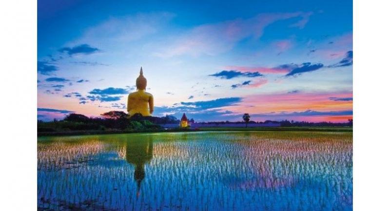 Thailand visitor arrivals up 11% in Jan-Jul