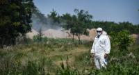 A man wearing a protection suit guards the site where pig bodies are being burned after the animals were culled on August 9 in Romania. - An African Swine Fever epidemic has broken out inn southeastern and northwestern regions of Romania.//AFP