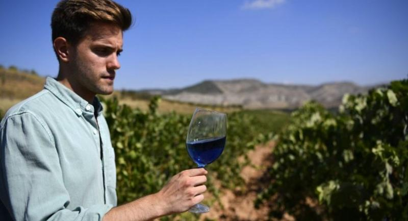 Co-founder of Spanish winemaking company Gik, Aritz Lopez, tastes a glass of their blue wine Gik Life at the company's winery in Maluenda, Aragon region. /AFP