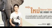 The latest campaign by Wildaid, Ivory Free.