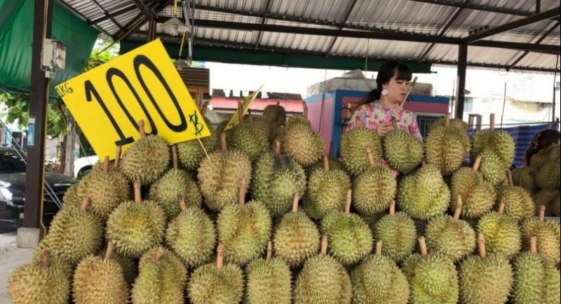 File photo : Durians in Thailand