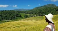 A tourist enjoys the scenery of Ban Pha Mon's beautiful rice terraces.