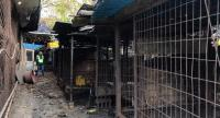 A handout photo taken and received on November 22, 2018 by US-based animal rights group the Humane Society shows cages at the Taepyeong-dong dog slaughterhouse complex in Seongnam city, south of Seoul./AFP