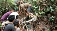 In this video grab taken on November 24, 2018 villagers try to capture a large python in Padang Pariaman, in West Sumatra.//AFP