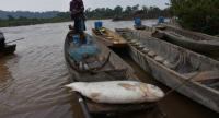 Fishery in the Mekong River could be affected by the navigation project