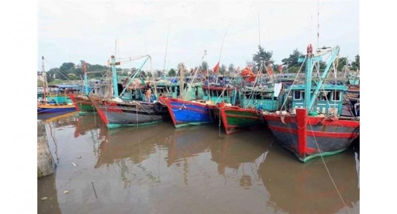 Ships safely anchored, awaiting Typhoon Pabuk. — VNA/VNS Photo