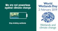 Photo from: www.unep-aewa.org