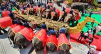 Elephants at Suan Nongnuch Pattaya attraction in Chon Buri province on Wednesday indulge in fruit and vegetables during the elephant buffet to mark the National Elephant Day.