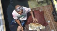 PHOTOS: Sea Turtles Conservation Centre of the Royal Thai Navy
