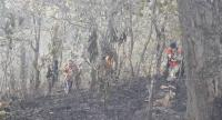 Forest firefighters walk past a burned-down forest in Mae Hong Son, where more than 32,000 hectares of forestland has been scorched so far this year.