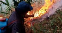 Volunteer firefighters from Ban Lao Wu in Chiang Mai's Wiang Haeng district battle a forest blaze yesterday.