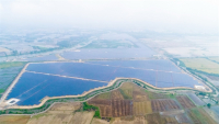 A solar power plant in Tay Ninh Province. With demand for energy increasing, the efficient use of energy and promoting renewable energy have become urgent requirements. — Photo courtesy of TTC