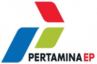 The logo of Pertamina EP. Pertamina was ranked 175th on the 2019 Fortune 500 list. (Courtesy of/pertamina-ep.com)