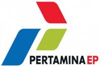 The logo of Pertamina EP. Pertamina was ranked 175th on the 2019 Fortune 500 list. (Courtesy of/pertamina-ep.com)
