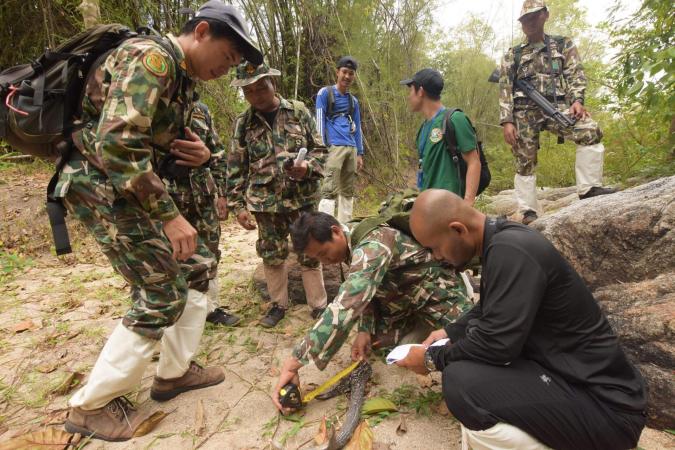 Participants observe SMART patrolling at Huai Kha Khaeng before attending the conference on World Ranger Day held at Khao Yai National Park on July 31. Photo credit: Kwanchai Waitanyakarn/ WCS Thailand