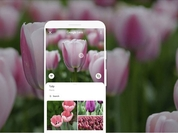 Google Lens' OCR – previously already able to identify objects in photos – now allows users to search their photos based on text embedded in the image or even convert that text into editable digital text. — Google.
