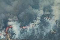 Amazon fires/Greenpeace Aug 24,2019