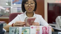 An employee counts money at a bank in Taiyuan, capital of Shanxi province. (PHOTO / CHINA NEWS SERVICE)