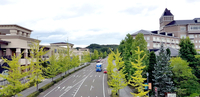 The scenery at Izumi Park Town, the Tapio Shopping Centre (left) and The Sendai Royal Park  where is next to the Sendai Izumi Premium outlets.