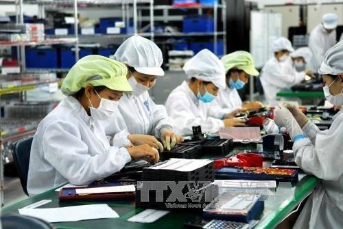 Workers assemble electronic parts at the Khai Quang industrial park in Vietnam's Vinh Phuc province. Photo: Viet Nam News/ANN