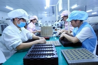Female workers assemble electronic components at Bao Sen Ltd Co in Bắc Giang Province. VNA/VNS Photo