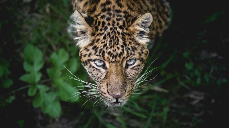 Photo Credit: United Environment Programme Website