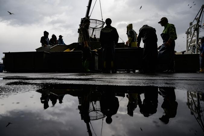 Fishermen sort salmon as they unload the Hokushin Maru.  Photo: Salwan Georges for The Washington Post