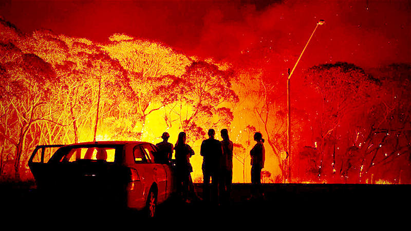 File Photo: Australia's bushfires /Getty Images