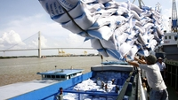 Rice is loaded at Saigon Port in HCM City. With the ratification of the EU-Viet Nam Free Trade Agreement, Viet Nam can export 80,000 tonnes of rice a year with a zero tax rate to the EU. — VNA/VNS Photo Dinh Hue
