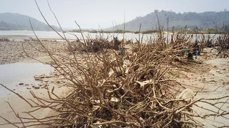 Dried Mekong riverbanks, Chiang Khong District , Chiang Rai Province, November 2019.Photo credit: Rak Chiang Khong