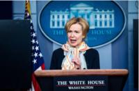 Deborah Birx, the White House coronavirus response coordinator, says social distancing could last months. MUST CREDIT: Washington Post photo by Jabin Botsford