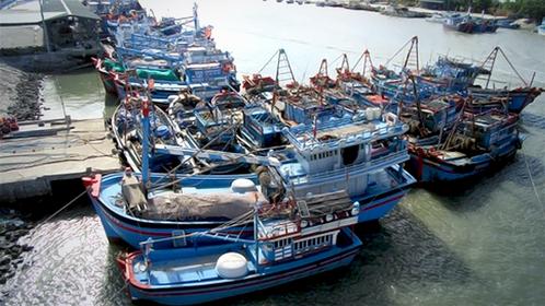 Offshore fishing vessels docked at Ninh Chữ port, Ninh Thuận Province. — VNA/VNS Photo Nguyễn Thành