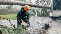 A worker saws a trees removed from on top of a house after Hurricane Laura made landfall in Lake Charles, La., on Aug. 28, 2020. MUST CREDIT: Bloomberg photo by Bryan Tarnowski.