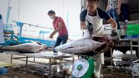 Vietnamese tuna fishermen from Khánh Hoà Province. — VNA/VNS Photo