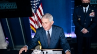 Anthony Fauci, director of the National Institute of Allergy and Infectious Diseases, participates in a coronavirus briefing at the White House on Nov. 19, 2020. MUST CREDIT: Washington Post photo by Jabin Botsford
