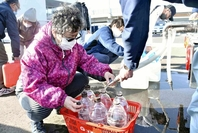 A woman gets water put into plastic bottles that she brought to a water supply truck on Sunday morning in Yamamoto, Miyagi Prefecture. (The Yomiuri Shimbun)