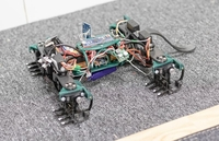 The X-4 robot was made to mimic lizard movements. MUST CREDIT: Clemente Biomechanics and Biorobotics Lab