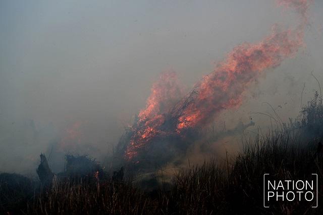 Khuan Khreng wildfire still smouldering as officials tackle